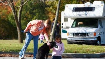 6 tips on how to travel with a dog in a motorhome