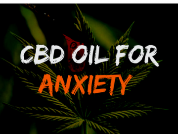 Cannabidiol (CBD) as a Cure to Anxiety