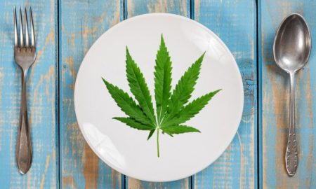The best ways to consume marijuana for a beginner cannabis user